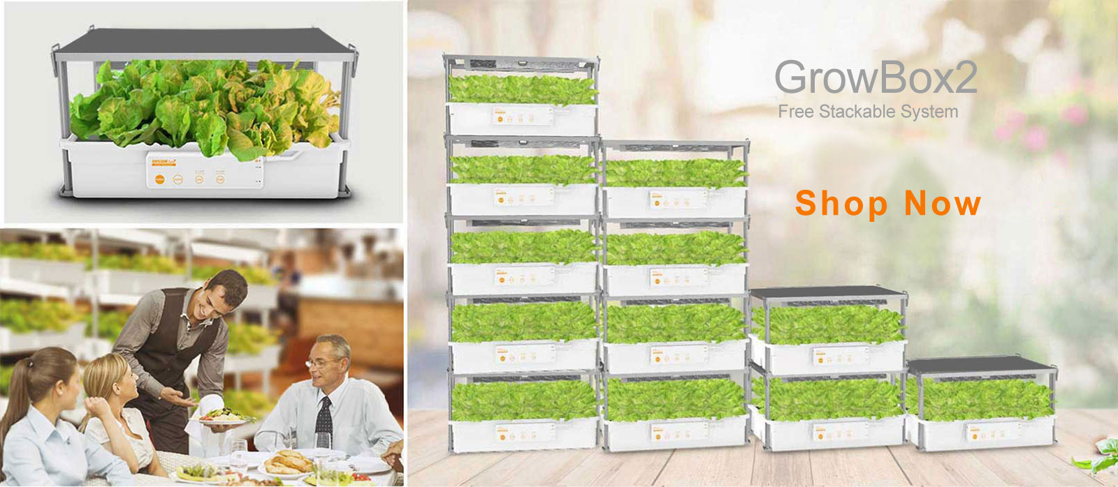 GrowBox2-Hydroponics,hydroponic grow system,Free Stackable System